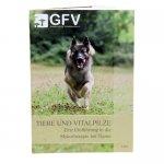 Vitalpilze für Hunde
